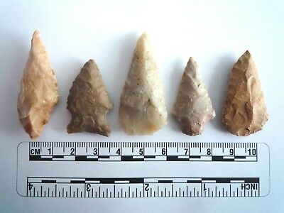 5 x Native American Arrowheads found in Texas, dating from approx 1000BC  (2222)