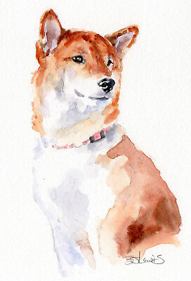 Original Watercolor Finnish Spitz Double Matted 8x10 Ready to Frame