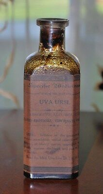 Antique Pharmacy Medicine Lloyd Brothers Uva Ursi For Genito-Urinary