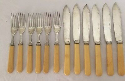 Faux Bone Handle 6 Fish Knives & 6 Forks A1 Silver Plated Sheffield England VGC