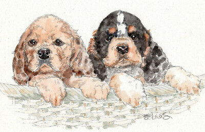 COCKER SPANIEL Original Watercolor on Ink Print Matted 11x14 Ready to Frame