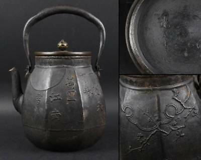 Japanese IRON TEA KETTLE 龍文堂 / W 17×H 23[cm] 2120 g / Meiji [1868-1912]