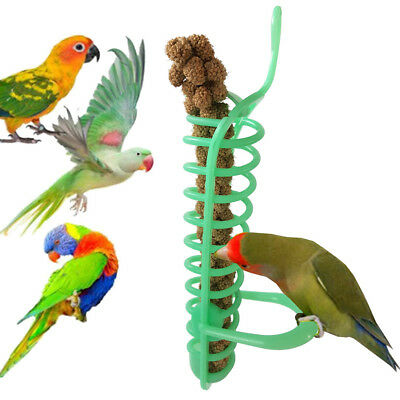 Hanging Spiral Feeder Birds Parrot Pet Food Fruit Holder Climb Play Toy Nice