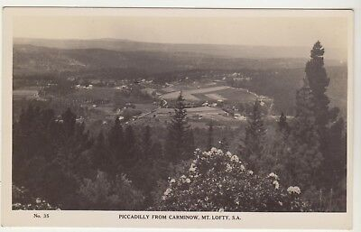 Overlooking Piccadilly South Australia Real Photograph Postcard C1920?