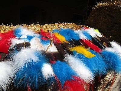 Indian feathers by the dozen
