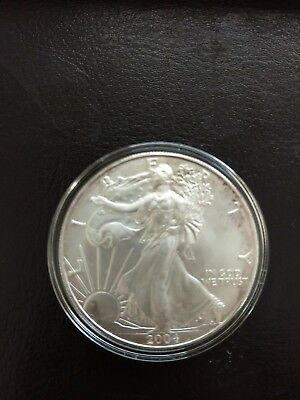 American Eagle 1oz Silver Proof Coin with Leather Case & COA US Mint