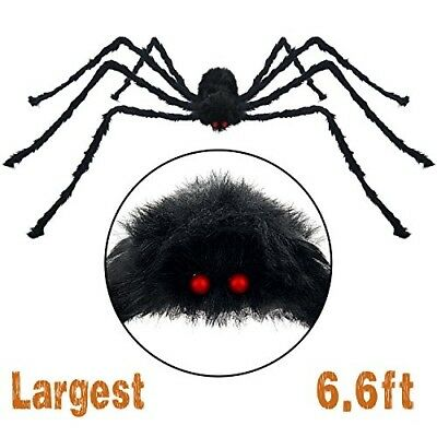 Pawliss Scary Halloween 6.6 Ft. 200cm Giant Spider Outdoor Decor Yard Decoration