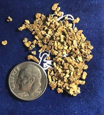 Alaska GOLD Nuggets 5 Grams Historic 40 Mile Mining District Chicken AK