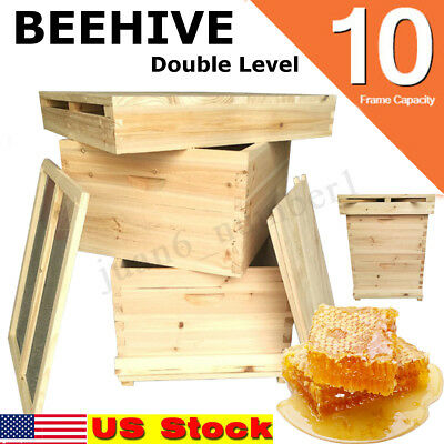 Beehive 10 Frame Complete Box Kit Langstroth Beekeeping Frames and Foundations