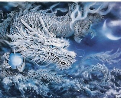 Dragon Animal Painting By Numbers Oil Acrylic Canvas Paint Number Kit DIY Decor