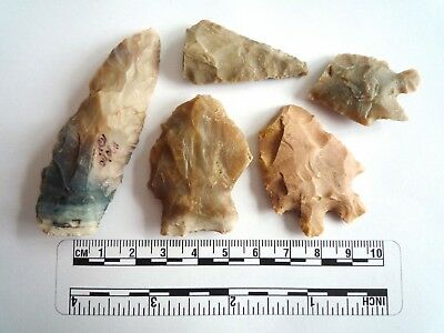 Native American Arrowheads found in Texas x 5, dating from approx 1000BC  (2249)
