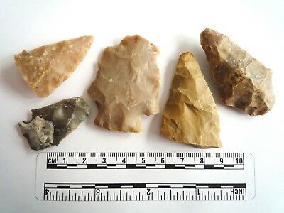 Native American Arrowheads found in Texas x 5, dating from approx 1000BC  (2257)