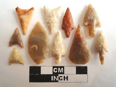 Neolithic Arrowheads x 10, High Quality Selection of Styles - 4000BC - (2139)