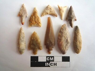 Neolithic Arrowheads x 10, High Quality Selection of Styles - 4000BC - (2131)