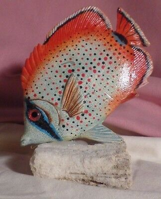 Solid Wood Hand Painted  Carved Angel Tropical Fish On Drift Wood Base