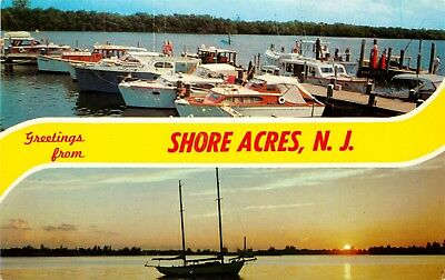 New Jersey Postcard: 2 Scene Greetings From Shore Acres, Nj
