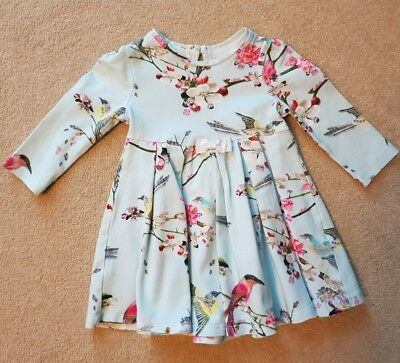 Ted Baker Baby Girl Blue Flower Print Dress Age 6-9 mths