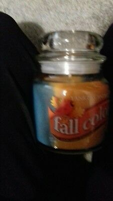 Yankee Candle medium jar 2 scents fall colours