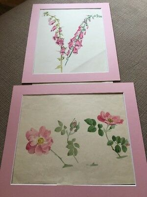 Pair Of Original Vintage Paintings Flowers c1930's, With Pink Mounts