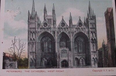 Postcard of Peterborough Cathedral-West Front. c1905. Francis.F. Frith.AH6423.