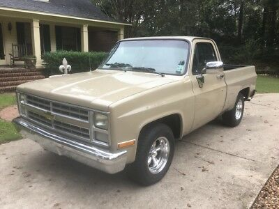 1985 Chevrolet C-10 Custom Deluxe 1985 Chevrolet C10 square short bed May consider trade