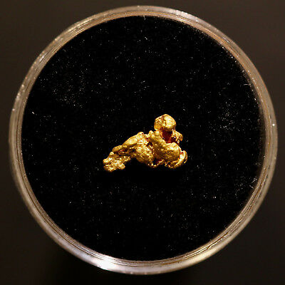 Gold Nugget 0.55 Grams (Australian Natural) #28