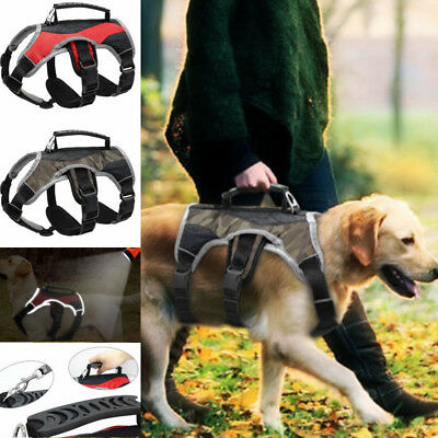 Web Master No Pull Dog Harness with Handle Reflective Quick Fit Adjustable S-XL