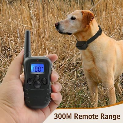 Petrainer Rechargeable Electric Dog Training Collar Shock Collar LCD Remote 300M