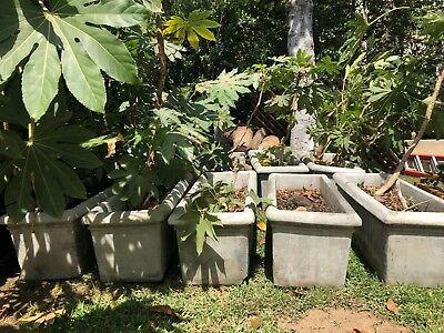 Architectural Salvage Vintage Concrete Planters 10 total sold separately!