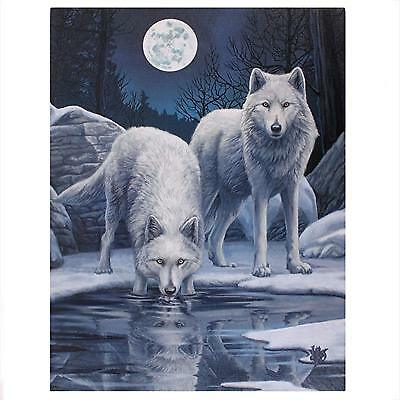 Lisa Parker Canvas Print Warriors Of Winter 40Cm X 30Cm On Wooden Frame - New