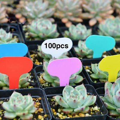 100Pcs Plastic T-type Garden Tags Plant Flower Label Nursery Thick Tag Markers Y