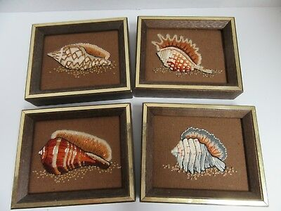 Set 4 Finished Jiffy Crewel Embroidery Seashell Framed Completed 5x7 Beach