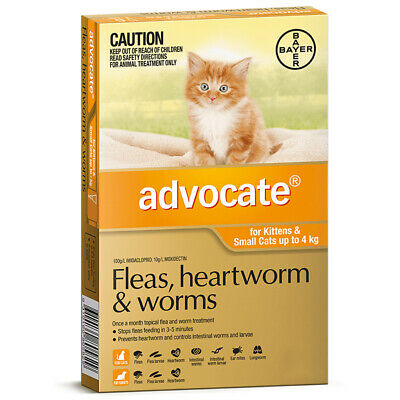 Advocate Cat Flea and Worm Treatment Kitten 0-4kg Orange 6's (A2308)
