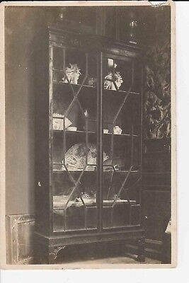 Antique Original English Cabinet Glass Doors 13 Panes Mahogany Furniture Photo
