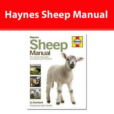 Haynes Sheep Manual Complete Step-by-Step Guide to Caring for Your Flock book