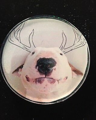 "English Bull terrier Dog Coaster Decor Resin Paperweight 4"" Spuds Mackenzie"