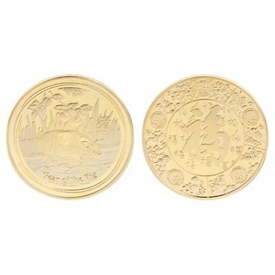 The year of the pig silver chinese zodiac 2019 anniversary coins souvenir coinVN