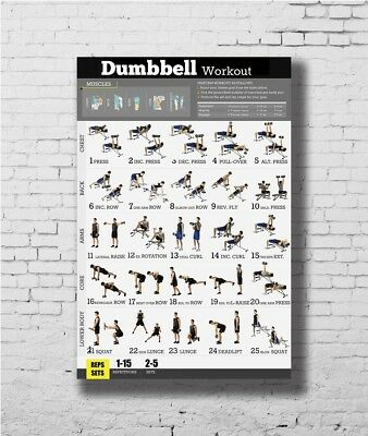 Dumbbell Workout Exercise Body Strength Poster - 8x12 24x36 Gift E-1280