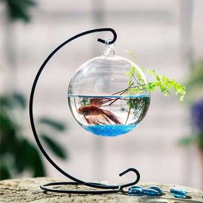 Ball Shape Clear Glass Hanging Flower Vase Mini Fish Tank Aquarium