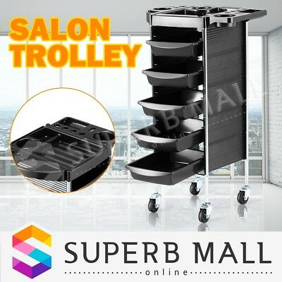 6 Tier Beauty Salon Trolley Hairdressing Rolling Storage Tray Drawer Cart Spa