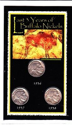 2003 The Last 3 Years of Buffalo Nickels in Sealed Plastic