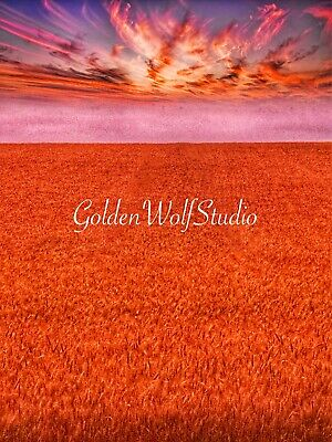 Digital Photo Picture Image - Copper Fields - Free Shipping
