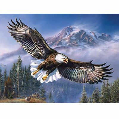 Eagle 5D DIY Full Drill Diamond Painting Embroidery Cross Stitch Kit Home Decor