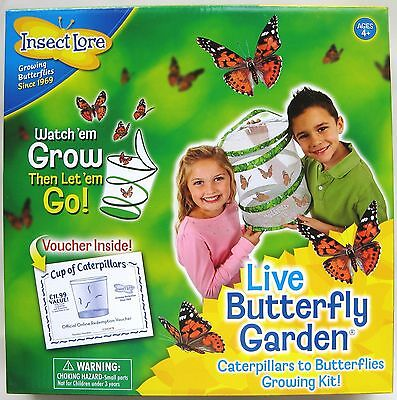 Insect Lore - Live Painted Lady Caterpillar & Butterfly Garden Kit – New!