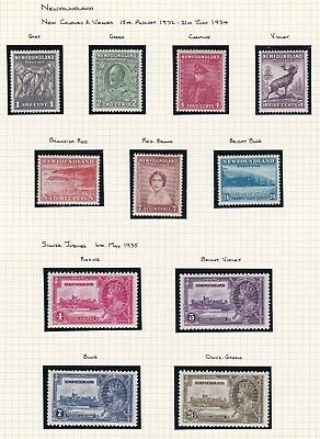 Commonwealth. Canada. Newfoundland. 1932-46 selection.  TWO PAGES Mint / MNH.