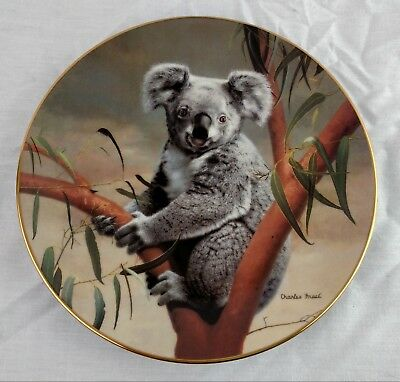 Koala Collector Plate w Box & Certificate George Nature's Loveables 1990 Frace