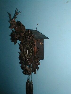 1 DAY SALE  BARGAIN GIANT STAGS HEAD ANTIQUE CUCKOO CLOCK  JUST £140 ono