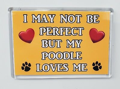 I MAY NOT BE PERFECT BUT MY POODLE LOVES ME Novelty Fridge Magnet - Ideal Gift