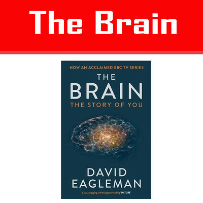 The Brain: The Story of You By David Eagleman Paper back NEW Book Brand