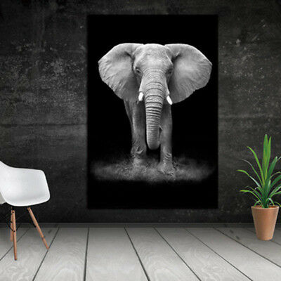 Framed Home Decor Canvas Print Painting Wall Art Elephant Poster Picture 3045cm